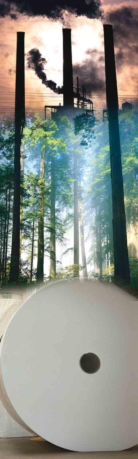 проблемы лесопромышленного комплекса