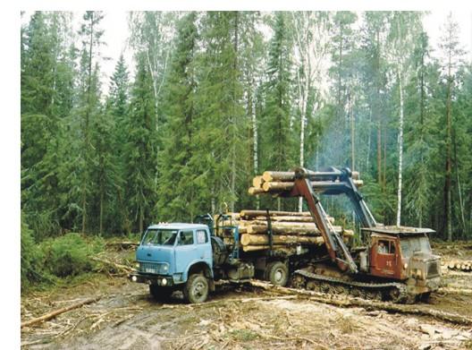 Состояние лесопромышленного комплекса