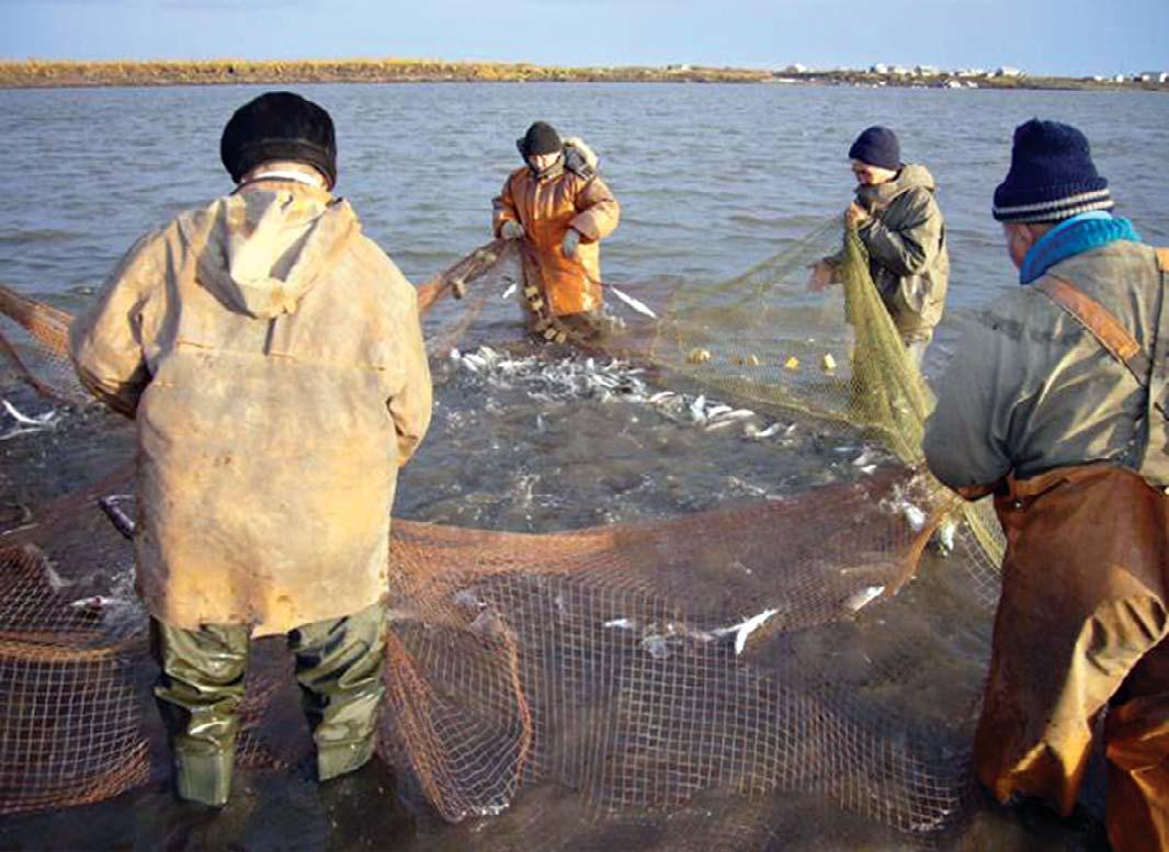 Закон о рыболовстве 2012