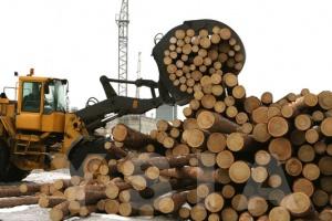 Развитие лесного комплекса